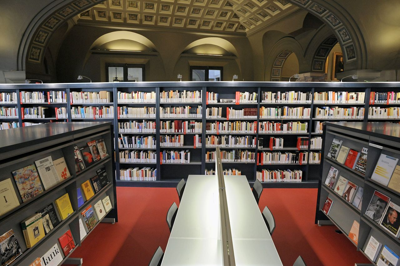 Biblioteca de l'Ateneu (àmbit Canuda)